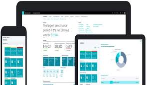 Role of Business Central and Power BI in Modern Day Businesses